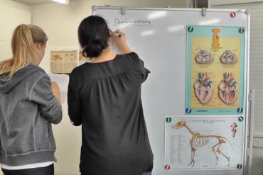 Videocontent Imagevideo Bildung Online Werbeagentur Zürich Kommunikation